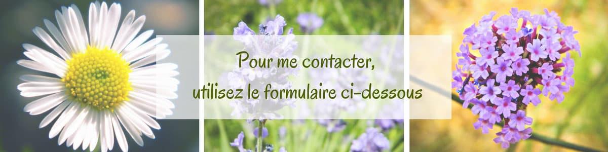 formulaire-contact-linkedin-1-blog-les-desirs-d-elisa.jpg